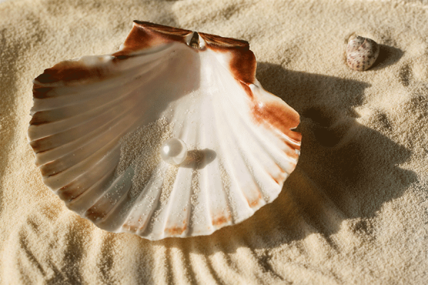 The Secret of Buying the Perfect Pearl